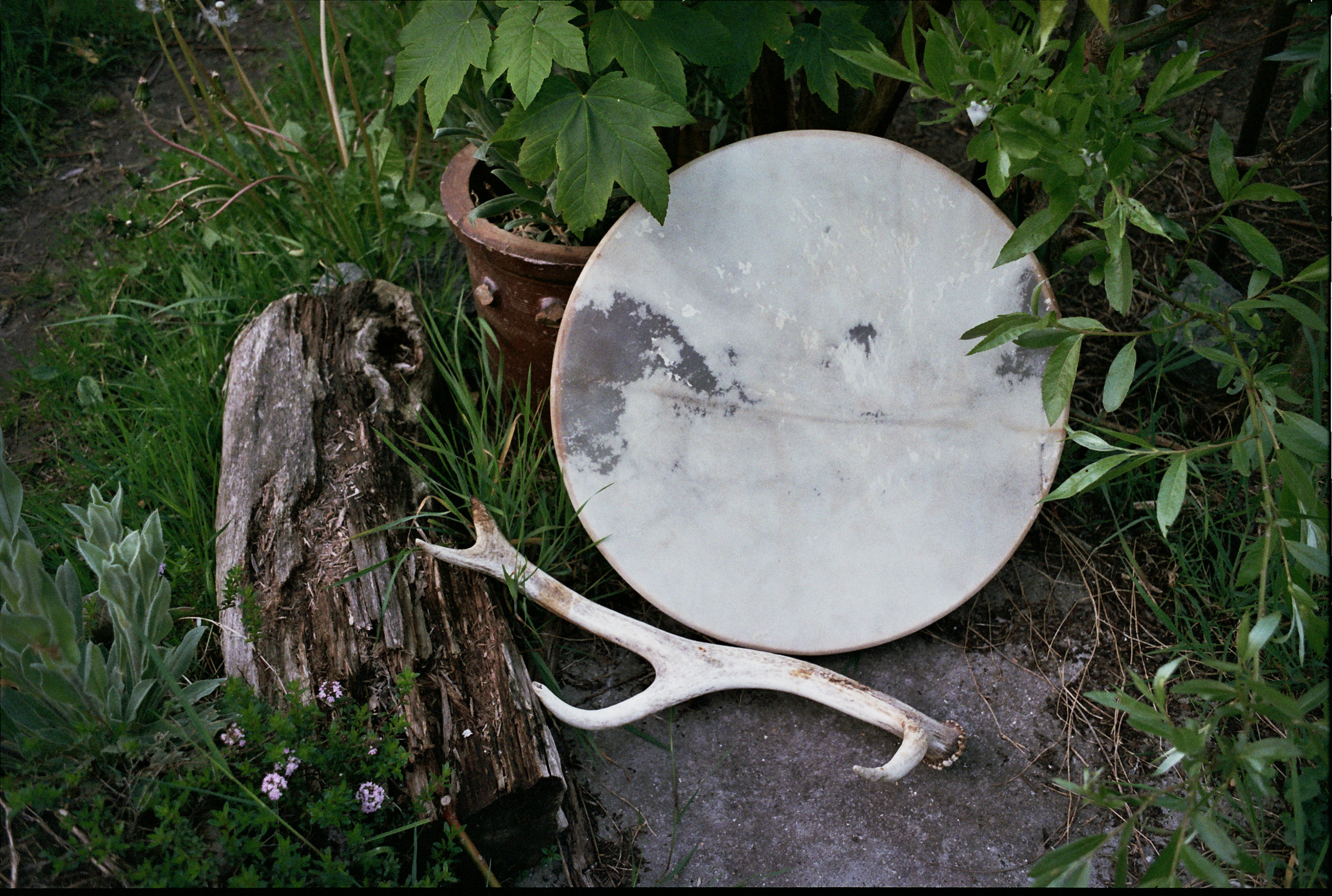 shifting. make your own shamanic drum